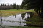 Backyard flooding, May 2013.