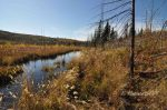 Cutting, Gunflint Lake, October 2014.