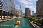 Chicago River, June 2016.