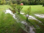 Backyard flooding, July 2016.